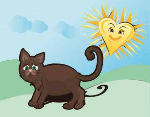 Evitar golpe de calor en gatos