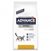 Advance Renal Failure Feline