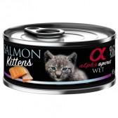 Alpha Spirit lata cat kitten salmón