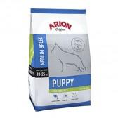 Arion Puppy