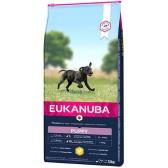 Eukanuba Puppy Razas Grandes