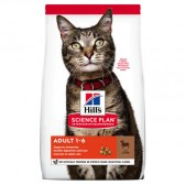 Pienso gatos Hills Gato Adulto Cordero