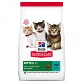 Hills Kitten Atún