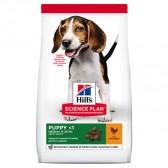 Hills Puppy Razas Medianas