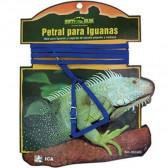 Petral + correa iguanas