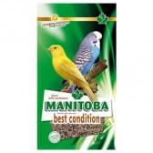 Mixtura best condition manitoba