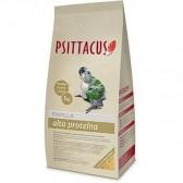Psittacus papilla alta proteína