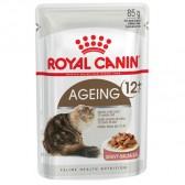 Royal Canin Ageing +12 gravy