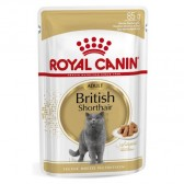 Royal Canin british shorthair húmedo