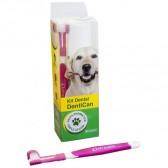 Kit Dental Dentican
