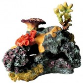 Arrecife coral 32cm