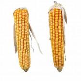 Mazorcas de maíz con farfolla 2 unidades Trixie
