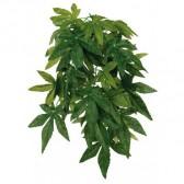 Planta seda abutilon colgante 30cm