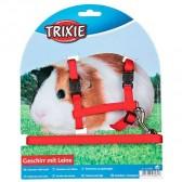 Set cobayas liso Trixie