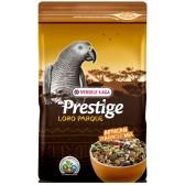 Prestige african parrot