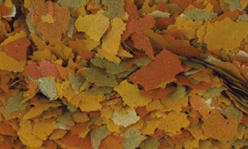 alimento para peces tropical goldfish color