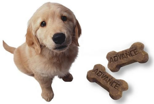 advance-puppy-snack.jpg