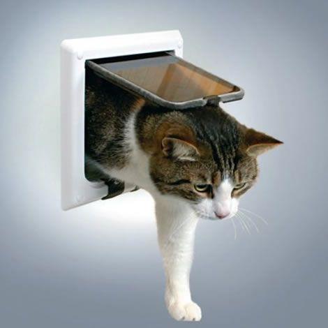 Puerta gatos para cristal 4 posiciones xl for Puertas para animales