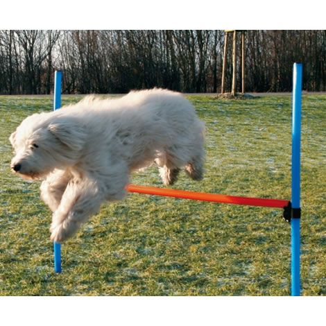 Vallas agility regulable